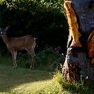 Deer Tree by Patricia  Butler
