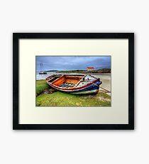 Barra Framed Print