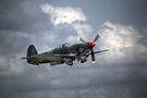 Russian Yak 3 by Nigel Bangert