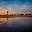 Flight To Tybee Island Lighthouse by NFirebaugh