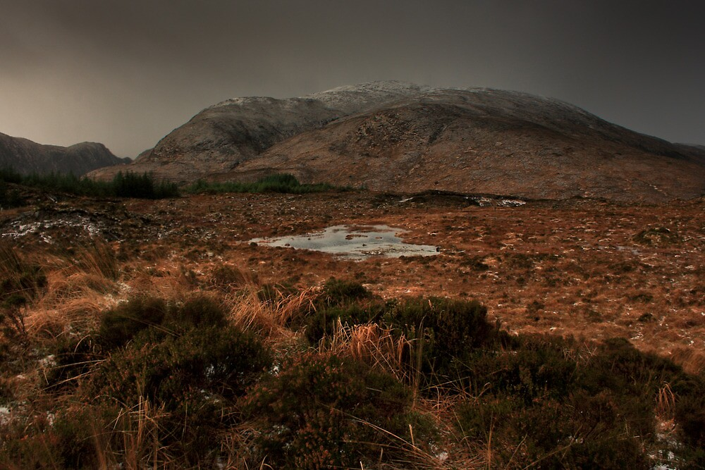 Croaghconnellagh In Winter by Adrian McGlynn
