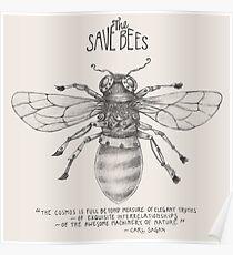 Steampunk - Rette die Bienen Poster