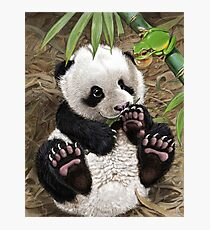 Panda & Cute Green Tree Frog Arbeit 1 Fotodruck
