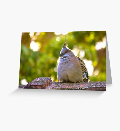 First Summer Greeting Card