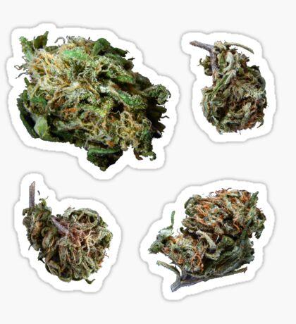 420 Buds #67 Sticker