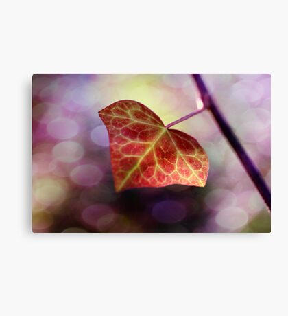 Light up, light up...As if you have a choice Canvas Print