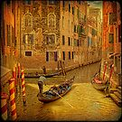 Venice... Crossing the light. by egold