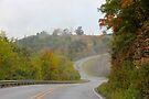 Scenic Arkansas by NatureGreeting Cards ©ccwri