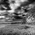 lake harris by james smith