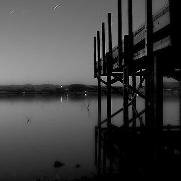 Night at the docks by craziwolf