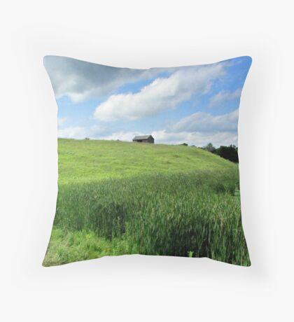 Little House on the Plains Throw Pillow