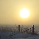 Here  Comes the Sun by lorilee