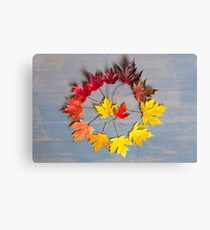 Maple leaf colourwheel Canvas Print
