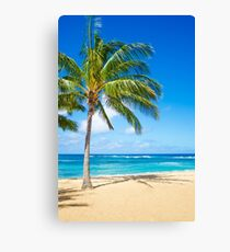 Palm trees on the sandy beach in Hawaii Canvas Print