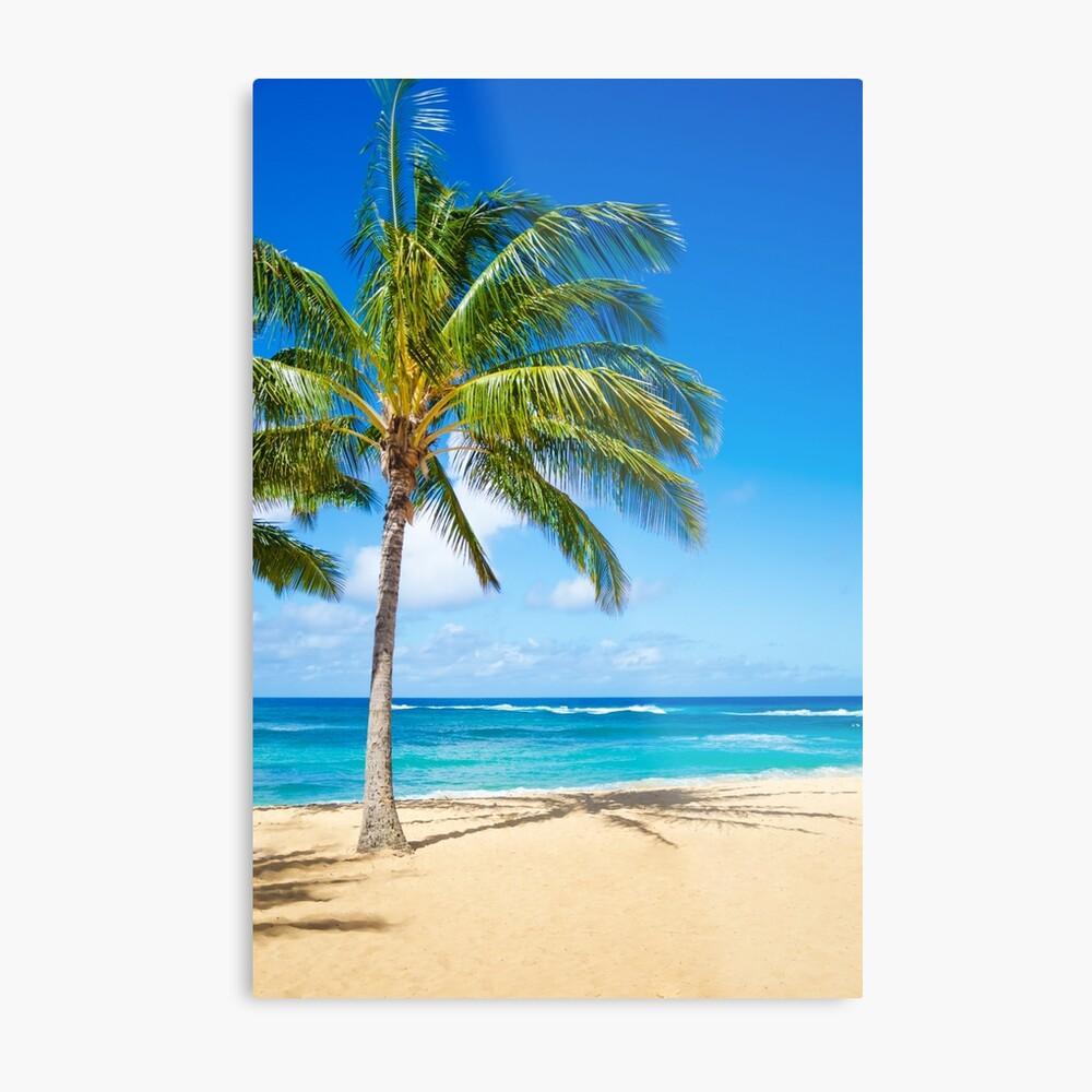 Palm trees on the sandy beach in Hawaii Metallbild