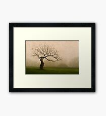 Unique tree in fog Framed Print