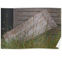 Grassy Door Poster