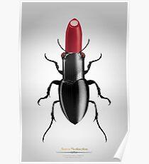 Coleóptero Carmín Poster