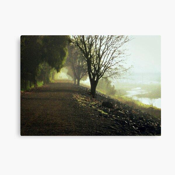 Too Far Away Canvas Print