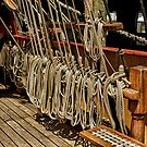 The Barque Europa........which rope shall I pull to make it go faster ?  by Roy  Massicks