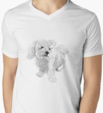 A Beautiful Bichon named Coconut ~ Black and white Men's V-Neck T-Shirt