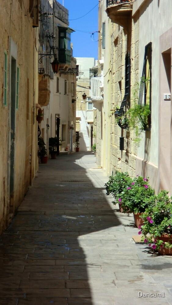 Malta Streetscape Two by Dansam1