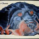 Rottweiler Puppy Portrait With Pedigree Charm Greeting by taiche