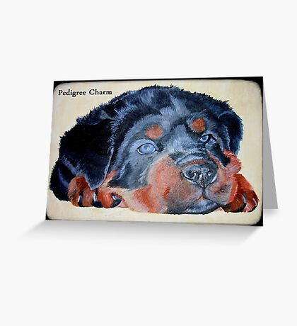 Rottweiler Puppy Portrait With Pedigree Charm Greeting Greeting Card