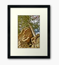 Hanging Strong Framed Print
