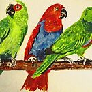 Three Parrots by BeenaKhan