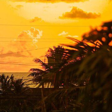 Hawaii by lyonandrewj