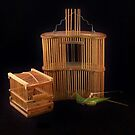 Cricket Cages by Barbara Morrison