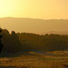 Sweeneys Sunset by Groenendevil