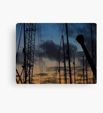 #crane Canvas Print
