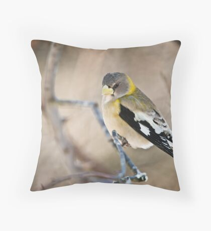 Female Evening Grosbeak Throw Pillow