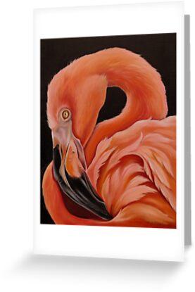 Flamingo Portrait by Phyllis Beiser