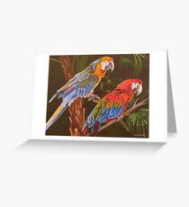 Dynamic Duo Greeting Card