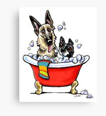 German Shepherd & Boston Terrier in the Bath Canvas Print