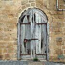 Tel Aviv Doors 4 by Igor Shrayer