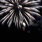 Festivities by WildestArt