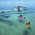 Relaxing on Heron Island by Anthony Wilson
