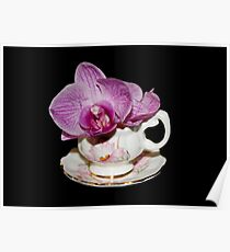 Orchid Still Life Poster