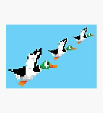 8-Bit Nintendo Duck Hunt 'Trio' Photographic Print