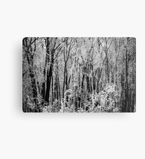 The Elfish Forest Metal Print