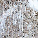 Icy Fingers  by Nancy Barrett