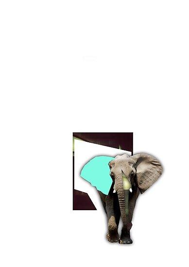 elephant by thispace