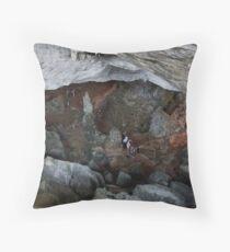 Sung Sot (Surprise) Cave in Ha Long Bay, Vietnam Throw Pillow