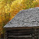 """Rooftop of Noah """"Bud"""" Ogle's Place in Autumn by Terri~Lynn Bealle"""