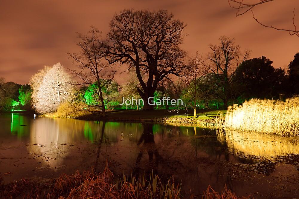 Christmas at Kew Gardens by John Gaffen