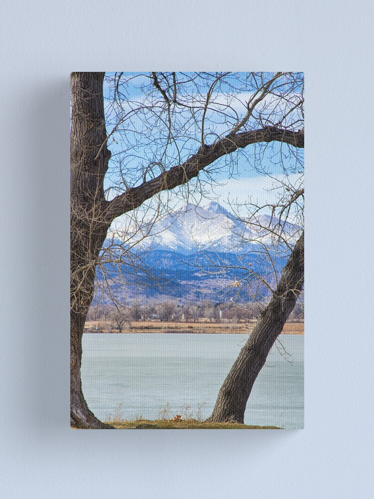 Alternate view of View Through The Trees To Longs Peak Canvas Print